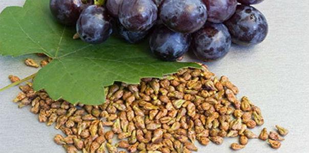 Эликсир молодости на виноградных косточках