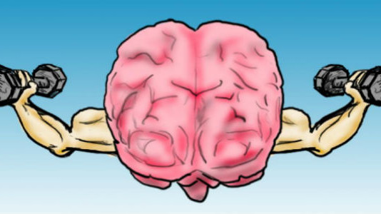 Улучшение умственной деятельности и продление жизни