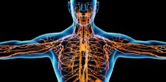 Народные методы чистки лимфосистемы