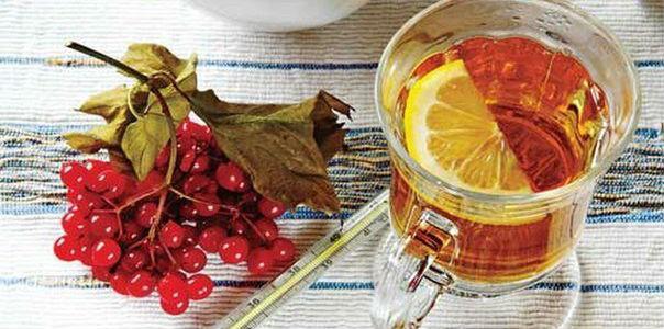 Вкусняшки против гриппа