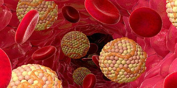 народные средства против холестерина в крови