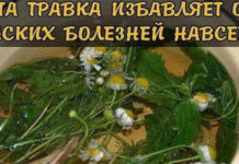 Эта травка избавляет от женских болезней
