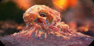 Новое открытие ученых в борьбе с раком