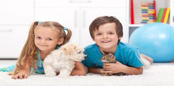 5 основных мифов об аллергии на животных у детей 1