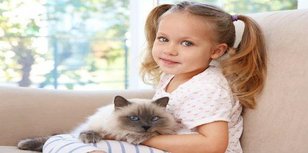 5 основных мифов об аллергии на животных у детей